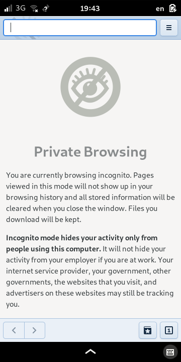 An incognito browsing window